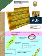 estrategias metodológicas 1