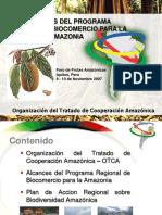 Alcances Programa Regional Biocomercio Amazonia 2007 Keyword Principal