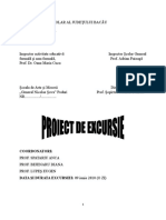 5_proiect_excursie.doc