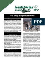 CIP41es.pdf