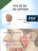 Trastornos de Las Glándulas Salivales