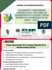 3.Desafios asumidos por Peru en COP13 _Roxana Solis.pdf