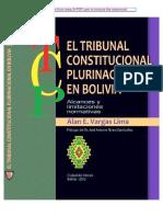 El Tribunal Constitucional Plurinacional en Bolivia - (2012)(Cut)