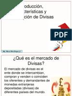 1 - Introducción Al Mercado de Divisas (USGP)