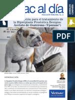 prostata perro.pdf