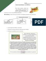 guiafabula-130617184344-phpapp01.pdf