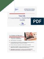Tema2B_QA&QC.pdf