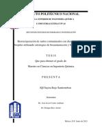 Rojo Santiesteban Sayira 2013 MC en IQ.pdf