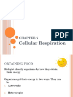 Cellular Respiration Notes 2012 (1).pptx