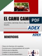 CAMU CAMU, PPT ADEX
