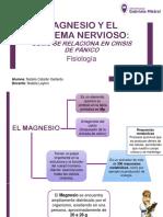 Magnesio y Su Relación Con El Sistema Nervioso