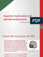 Aspectos Moleculares Del Periodo Embrionario