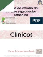 Repro femenino estudios.pdf