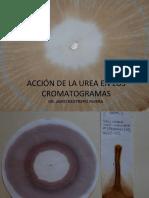 Cromatografia - 5 Urea, Sales - Dr. Jairo Restrepo