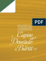 Capim-Dourado-e-Buriti.pdf