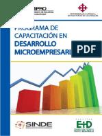 Texto Programa Microempresarial - Final
