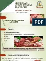 7. Control de Calidad de La Carne