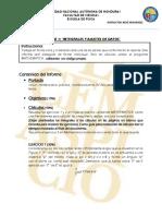 Lineamientos Informe 1 1