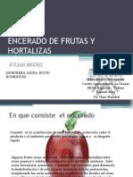 134041497 Encerado de Frutas y Hortalizas