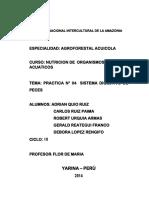 INFORME DE PRACTICA DE ICTIOLOGIA N° 04.docx