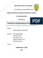 INFORME DE PRACTICA DE ICTIOLOGIA N° 05.docx