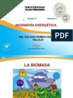 Ayuda 6 Biomasa