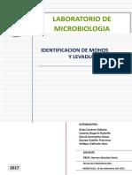 Mohos y Levaduras(Inf.1) (1)
