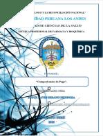 AUTOEVALUACION-JOYCE-SEDANO-MENDOZA.docx