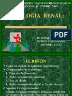 FUNCIONRENAL2007[2]