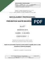 BAC PRO 2018 PREVENTION SANTÉ ENVIRONNEMENT SUJET