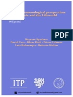 New Phenomenological Perspectives on The