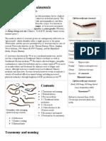yarsagumba.pdf