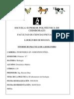 INFORME-DE-LABORATORIO (1).pdf