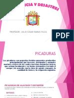 Grupo Picaduras