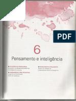 6 - Pensamento e Inteligência - Introdução à Psicologia
