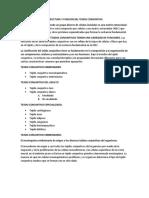 Estructura y Funcion Del Tejido Conjuntivo