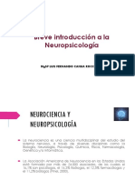 Introducción a La neuropsicologia