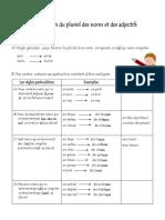 plur-des noms-adj.pdf