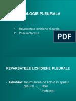 8Patologie-Pleurala