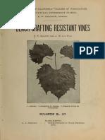 Bench Grafting Resistant Vines