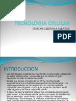 Tecnologia Celular Salvador
