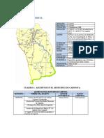 MUNICIPIO DE CAPINOTA.pdf