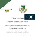 Portafolio de Evidencia Comercio Internacional