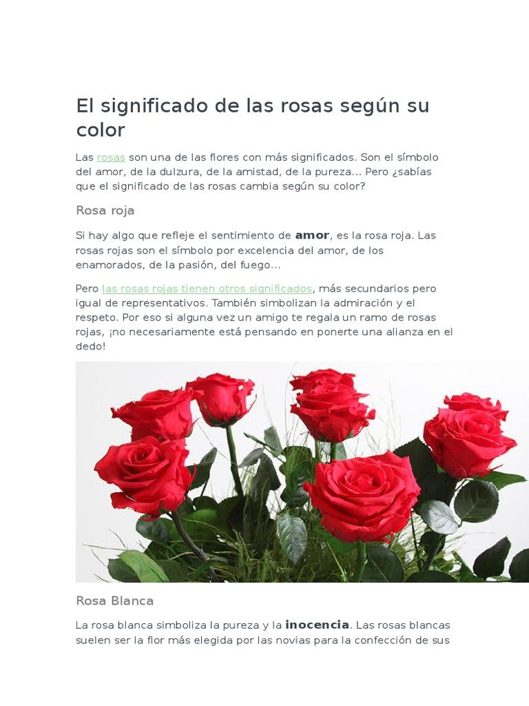 El Significado De Las Rosas Según Su Color Rosa Color