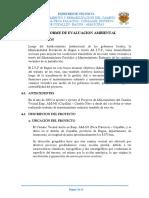 Informe Ambiental Original 2018