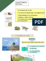 Ecosistema Clase 2