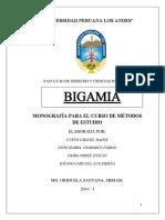 G4-Bigamia (1).docx