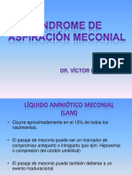 2n Sindromedeaspiracionmeconial 091012235740 Phpapp02