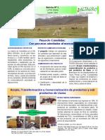 BOLETIN PAG 1 Proyecto Camelidos