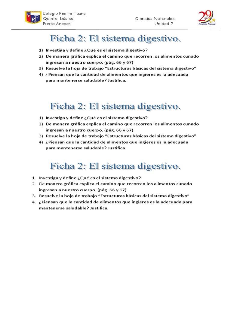 Perfecto Grado Del Sistema Digestivo Hoja De Trabajo 5 Foto - hojas ...